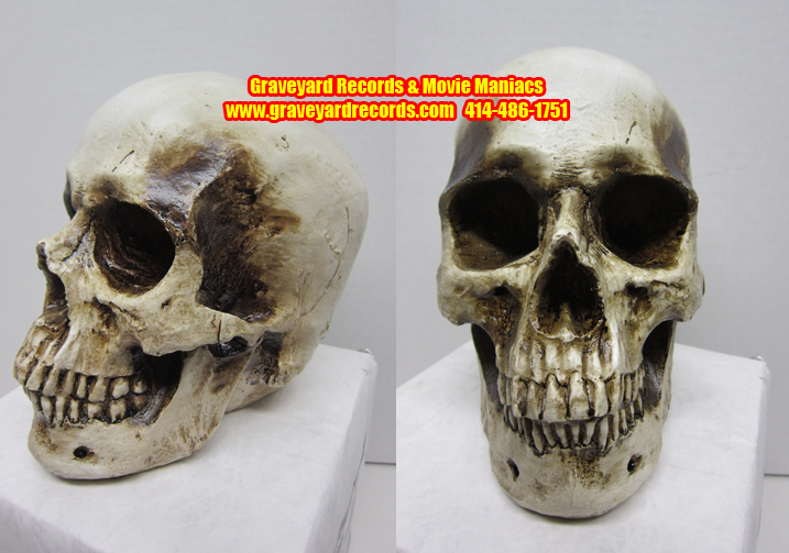 Life Like Human Skull # 1 - Closed Mouth