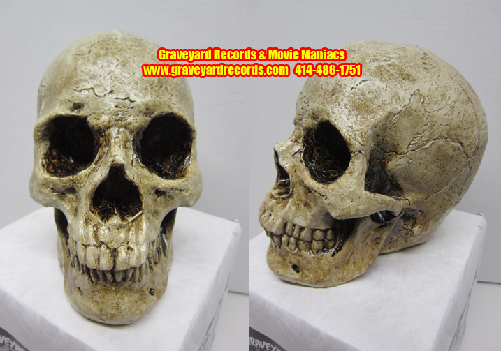 Life Like Human Skull # 2 - Closed Mouth