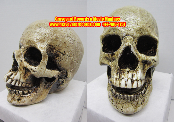Life Like Human Skull # 3 - Opened Mouth